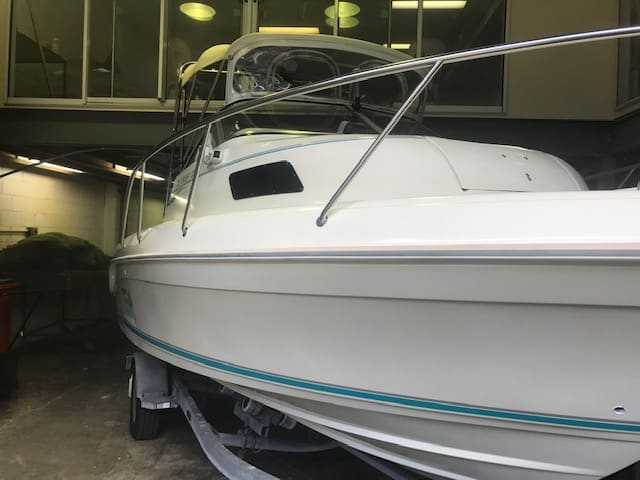 Cruise Craft 550 Detailed by The Boat Care Company